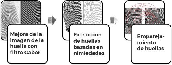 pasos involucrados en el reconocimiento de huellas dactilares