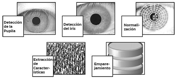 Pasos involucrados en el reconocimiento de iris